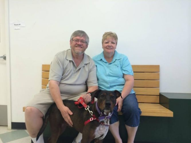 Fred - Adopted!