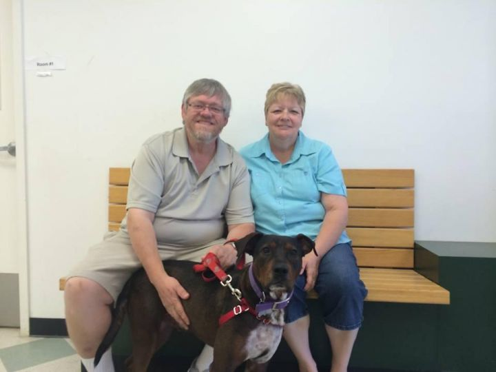 Fred - Adopted! 1