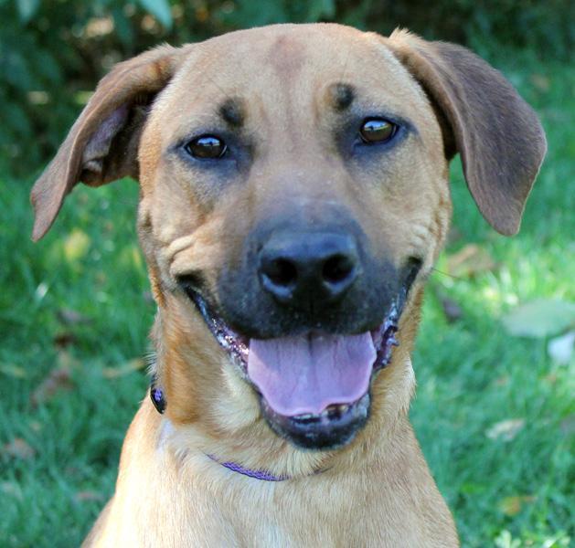 Rylee: Adopted!