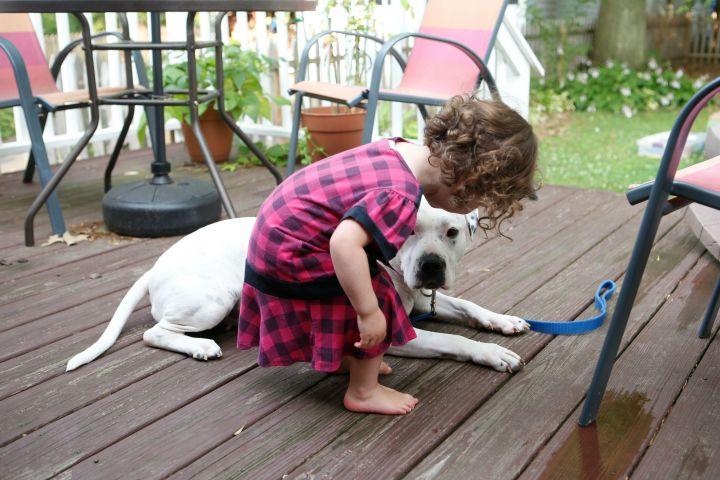HELEN - wow! a mellow puppy! 3
