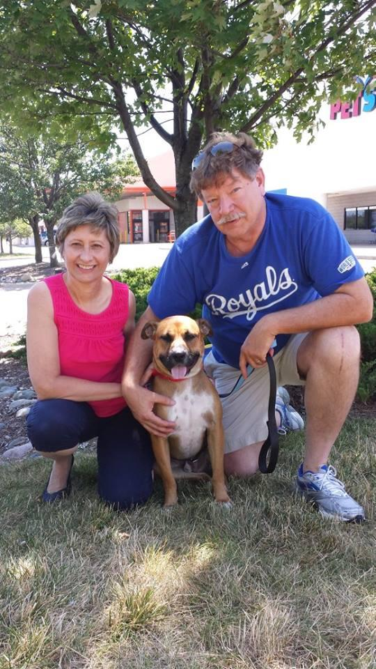 Flash-Adopted!