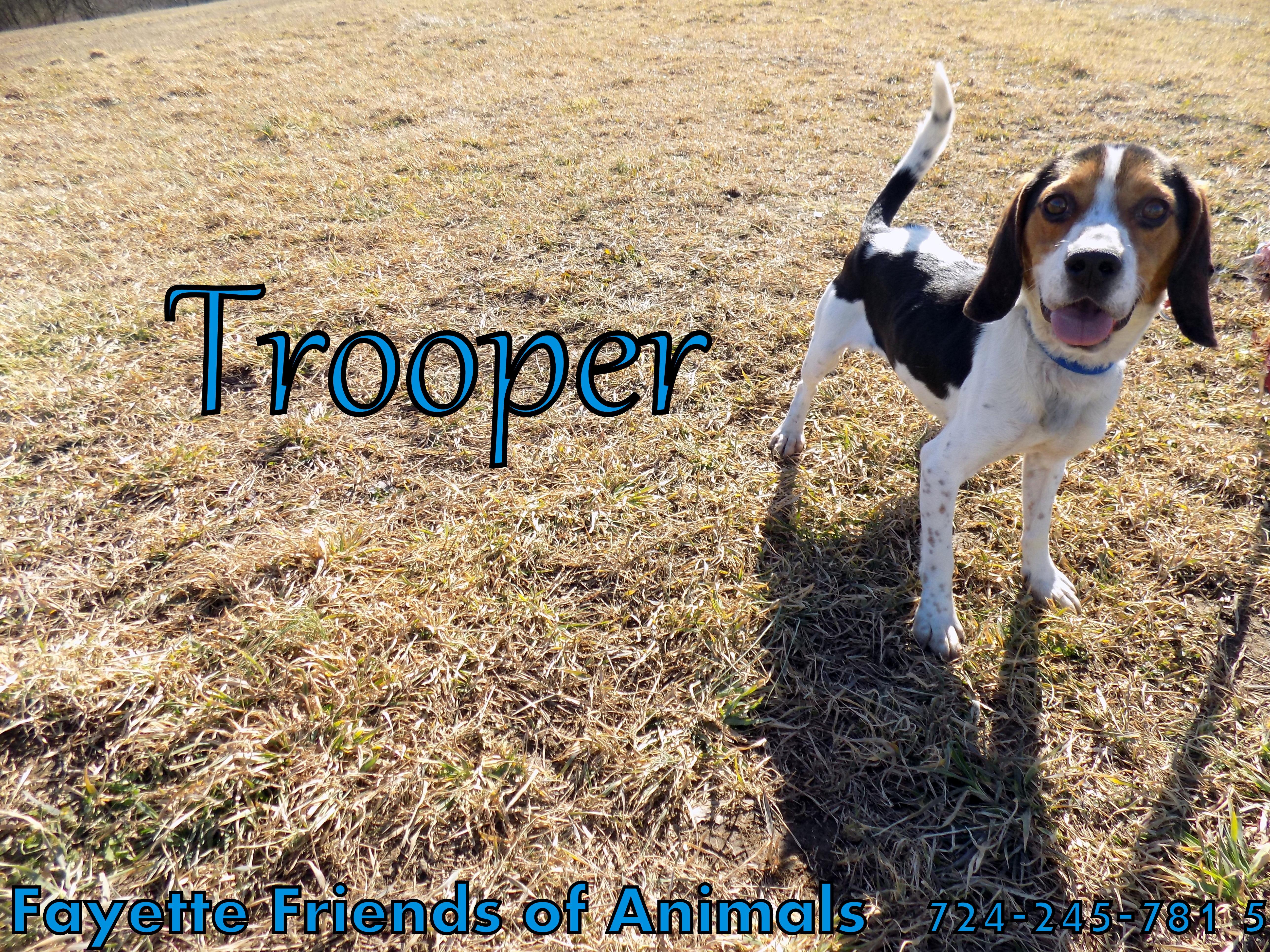 Trooper detail page