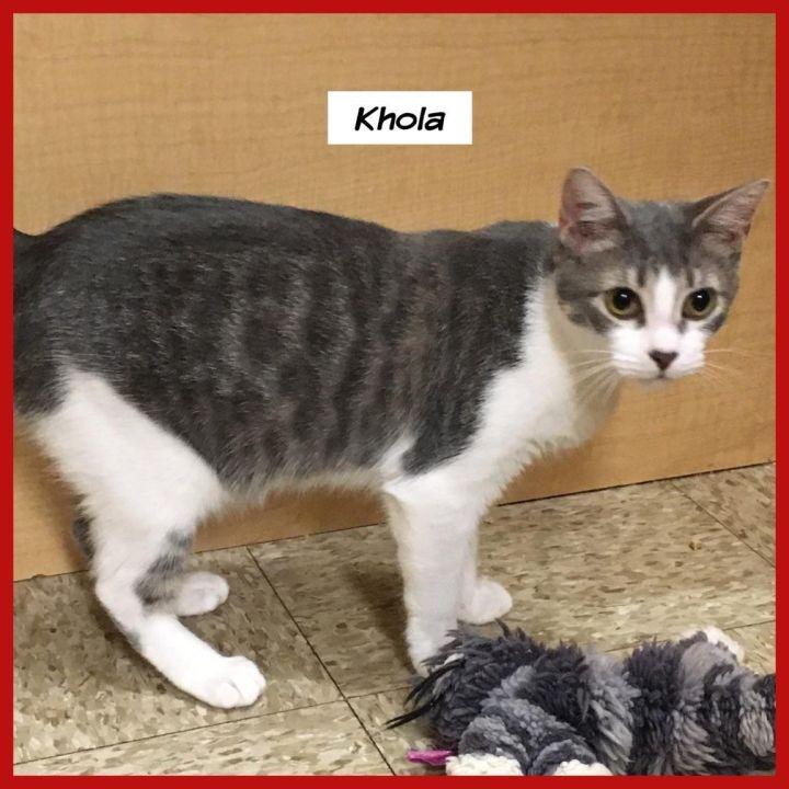 Khola 1