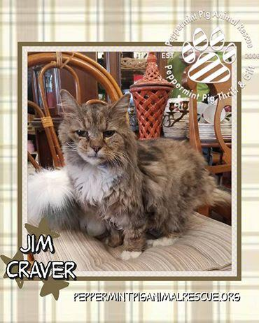 JIM CRAVER