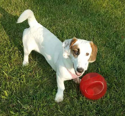 Daisy- Come Meet Me In DC!!! 2