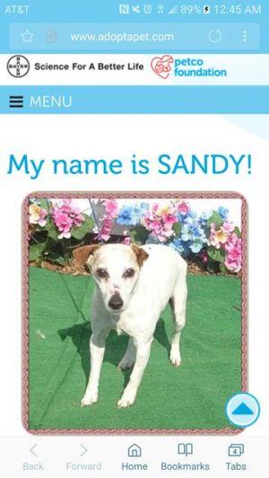 . Sandy/GA .