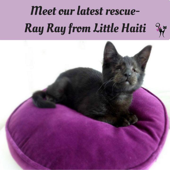 Ray Ray 2