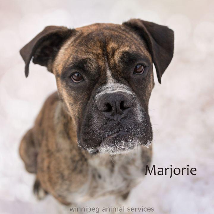 Marjorie 5