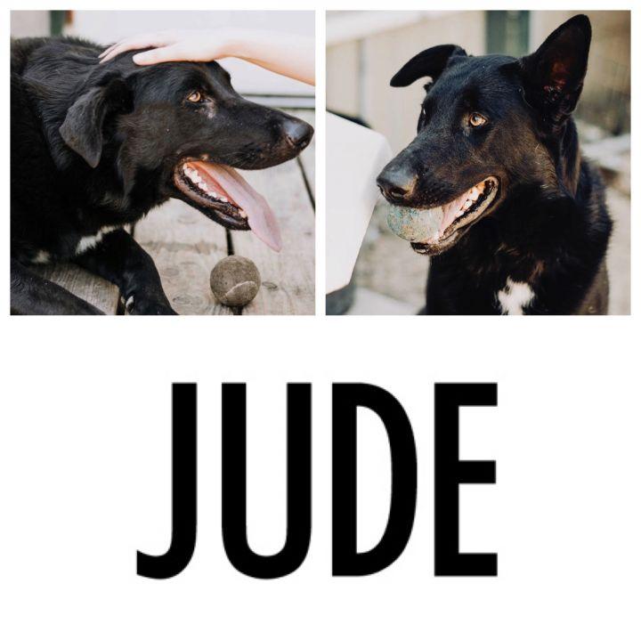 Jude 6
