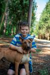 Bull Terrier Dog: Diego