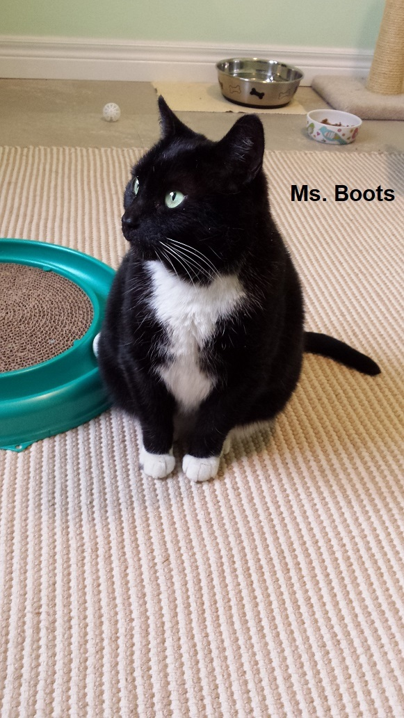 Miss Boots