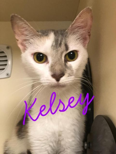 Kelsey!