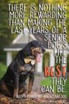 Black and Tan Coonhound Dog: Bubby