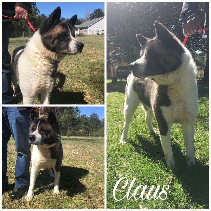 Claus 1