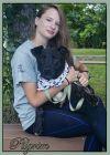 Labrador Retriever Dog: Pilgrim
