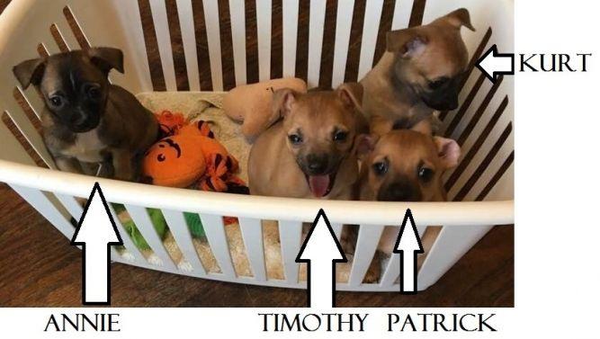 Kurt/Timothy-LHB