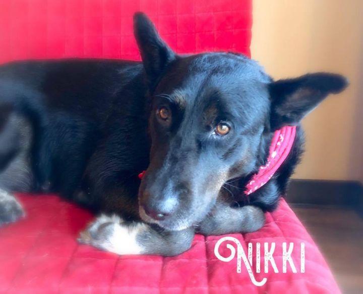 Nikki 3