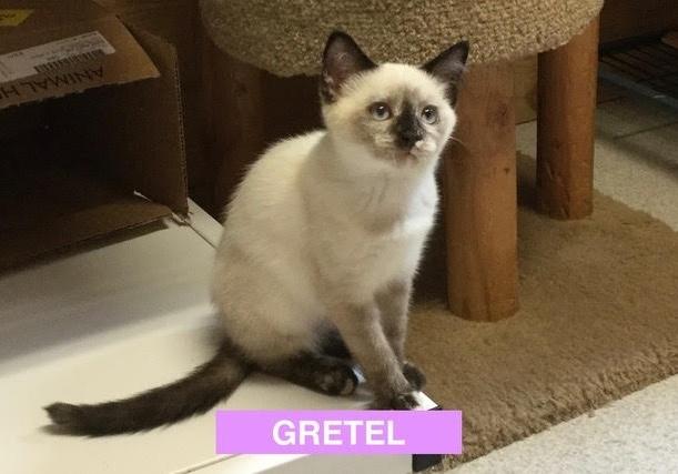 Gretel 2