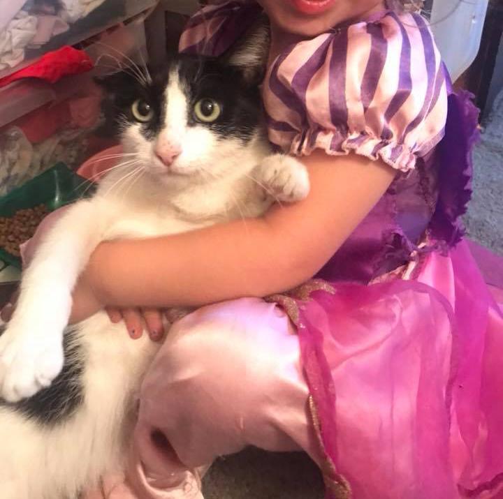Margot (Little Moo Kitty) 3