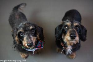 Benji & Lizzie