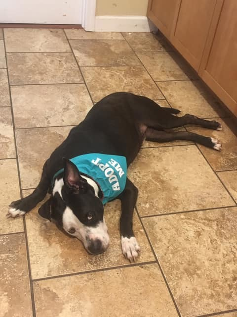 Cash in a foster home 6