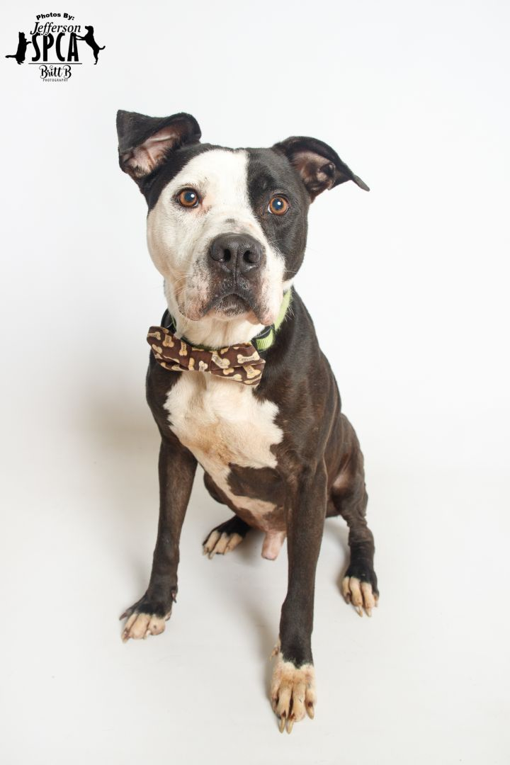 Cash in a foster home 4