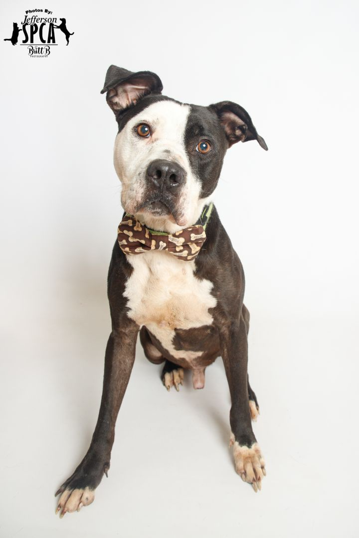 Cash in a foster home 5