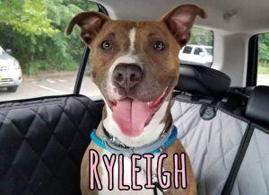 . Ryleigh .