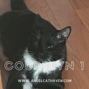 Courtlyn 1