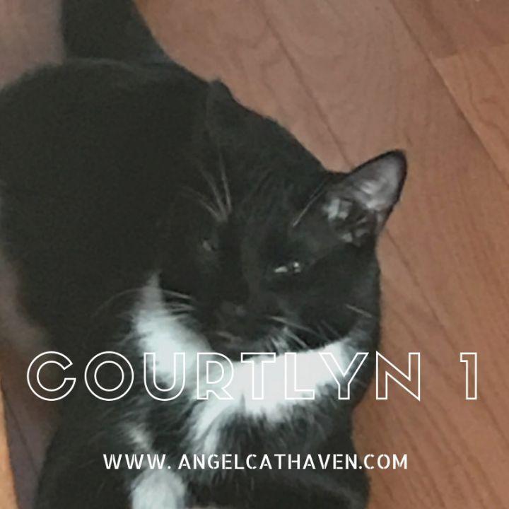 Courtlyn 1 1