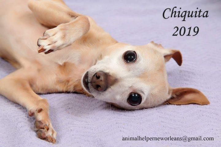 Chiquita 6