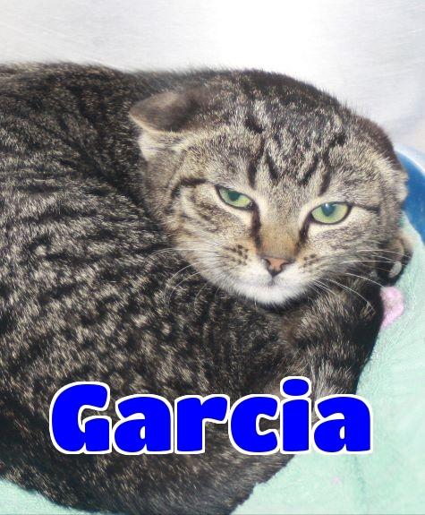 Garcia -sponsored