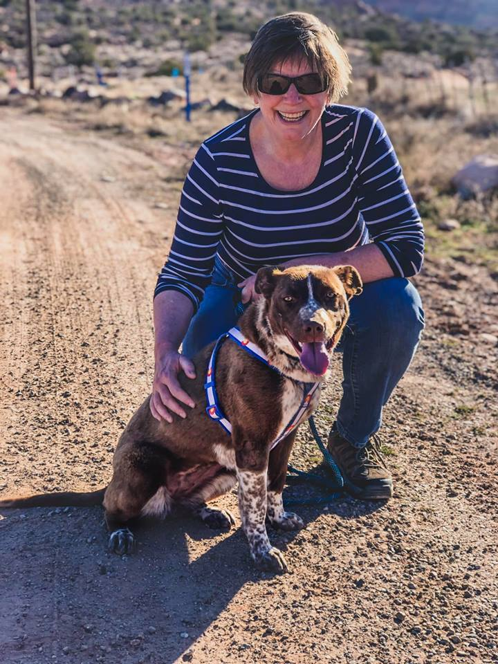 Ruby, an adoptable Australian Cattle Dog / Blue Heeler & Pit Bull Terrier Mix in Moab, UT