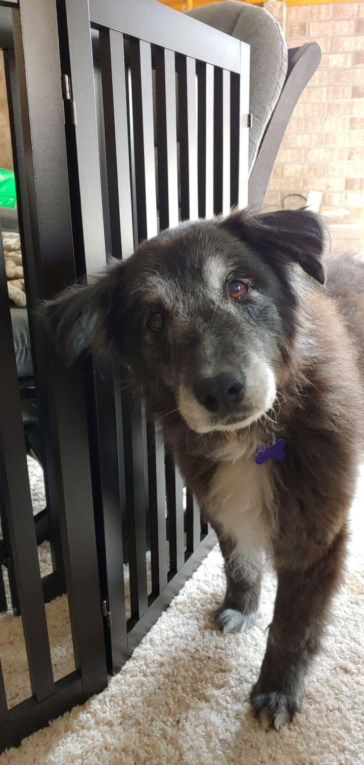 Tina- adopted!! 4