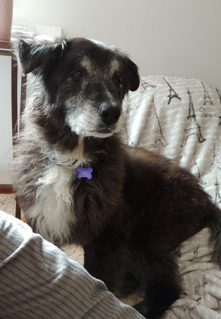 Tina- adopted!! 6