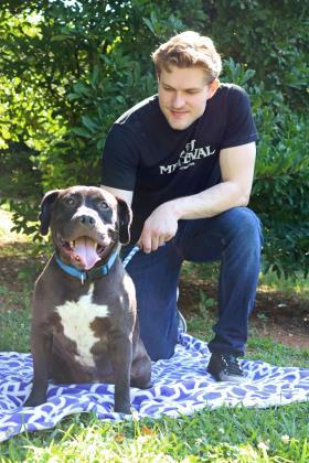 Jack Skellington, an adopted Terrier & Pit Bull Terrier Mix in Gainesville, GA