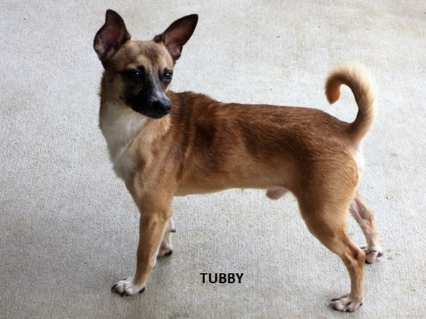 Tubby 2