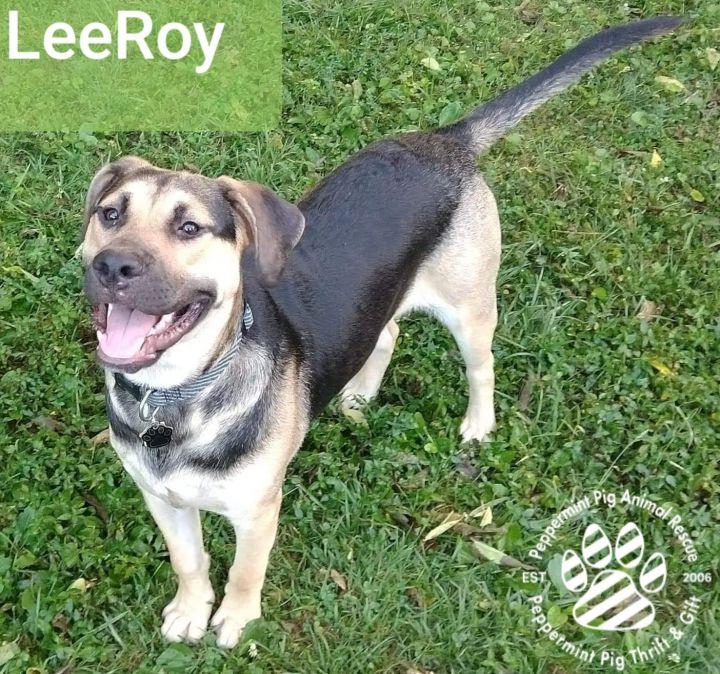 LeeRoy 1
