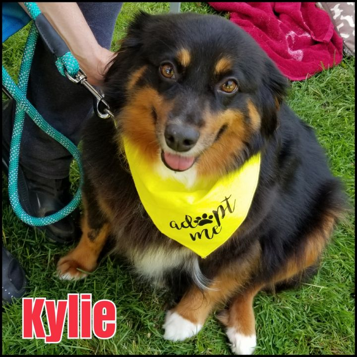 Kylie 1