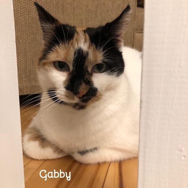 Gabby 2