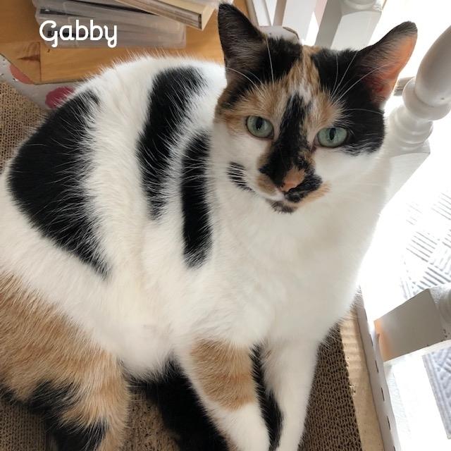 Gabby 5