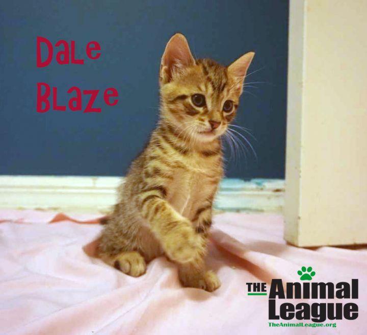 Dale Blaze 1