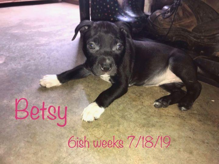 Betsy 1