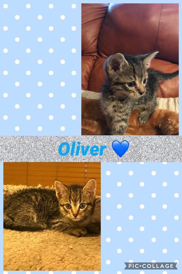 Baby Oliver 1