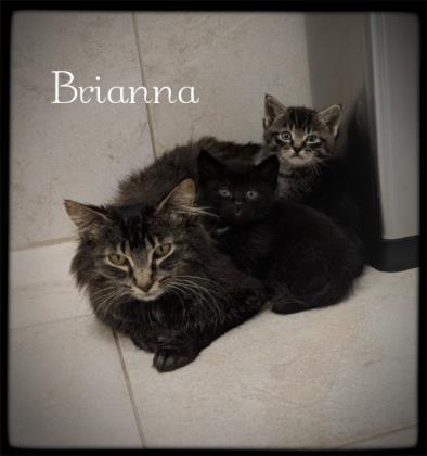 Brianna 1