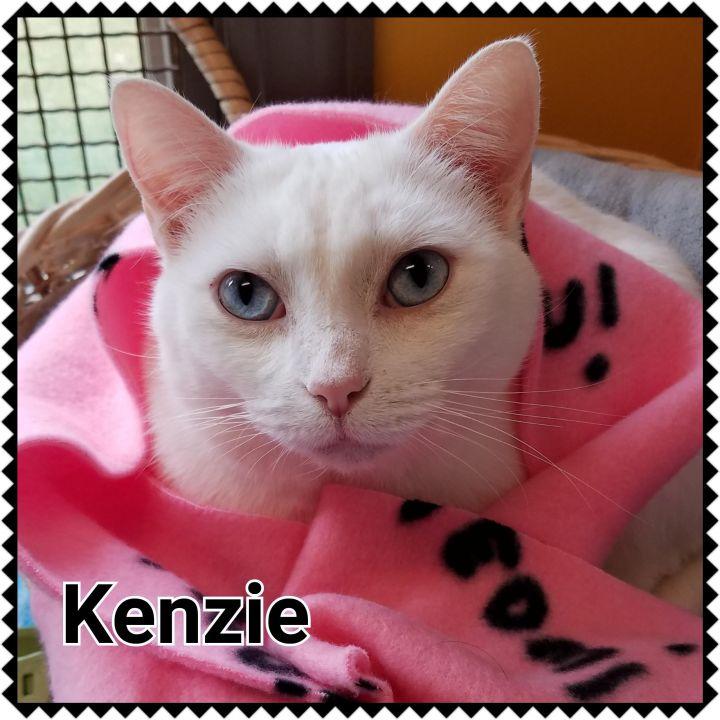 Kenzie 1