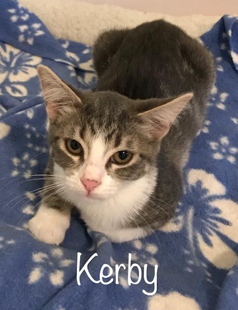 Kerby 2