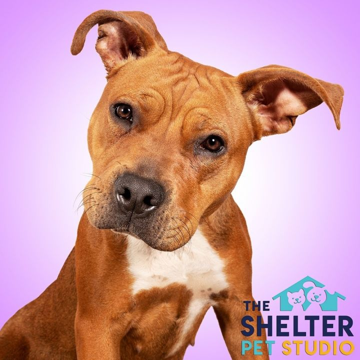 River A-5  ADOPTED!! 4