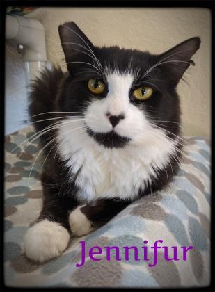 Jennifur