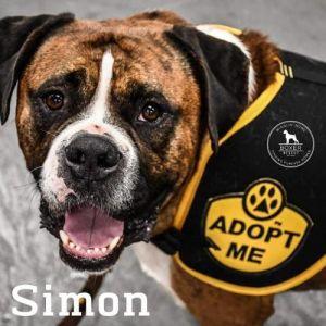 . Simon .